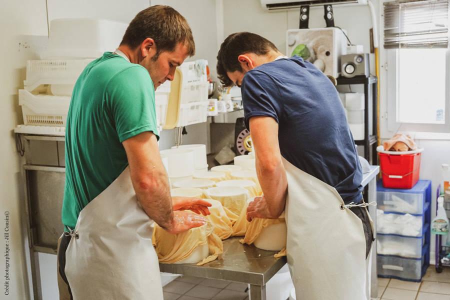 GAEC Biziari - Producteur de tomme de brebis Basque BIO - La Ruche qui dit Oui ! à la maison
