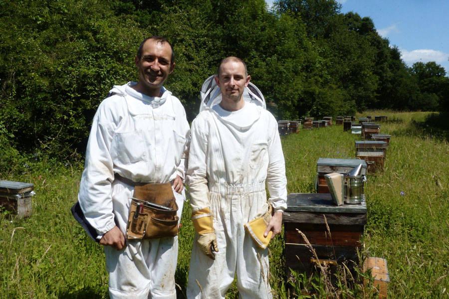 apiculteur ile de france