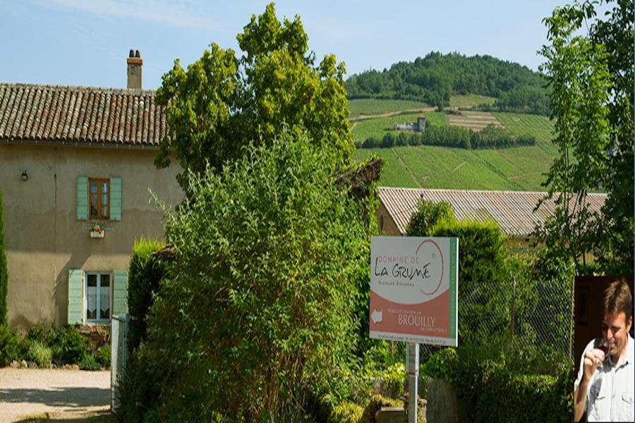 Domaine Nicolas Boudeau - Vigneron - La Ruche qui dit Oui ! à la maison