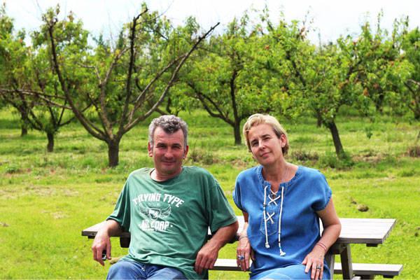 Cueillette de Nolongues - Maraicher - La Ruche qui dit Oui ! à la maison