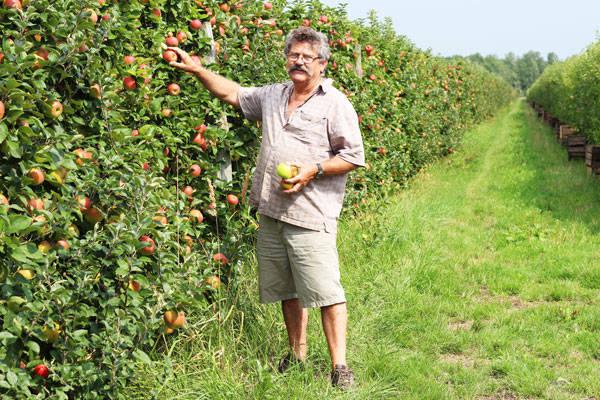 Vergers de Pomamour - Arboriculteur - La Ruche qui dit Oui ! à la maison