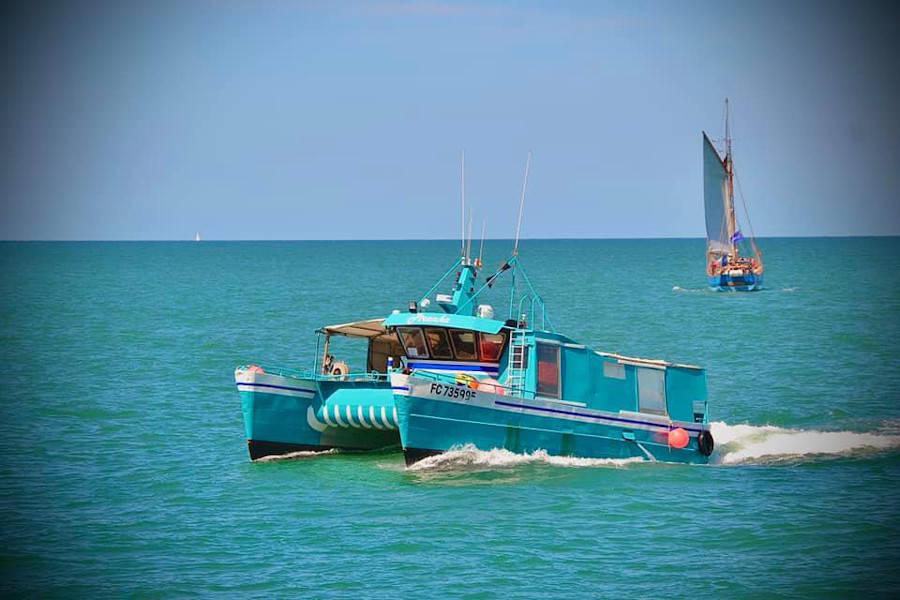 Buccimarée Producteurs associés - Pêcheurs-Ostréiculteurs - La Ruche qui dit Oui ! à la maison