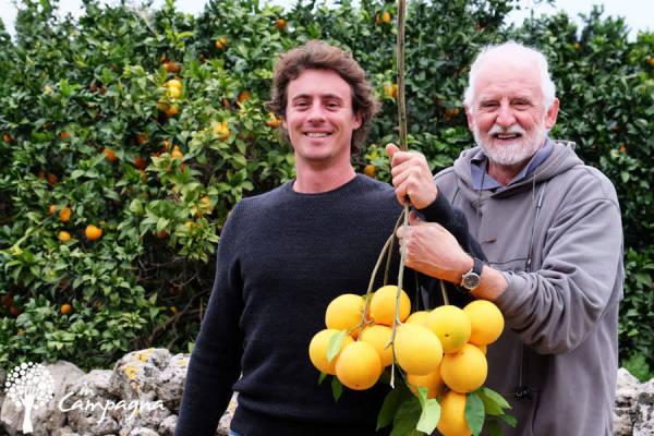 InCampagna - Arboriculteurs - La Ruche qui dit Oui ! à la maison