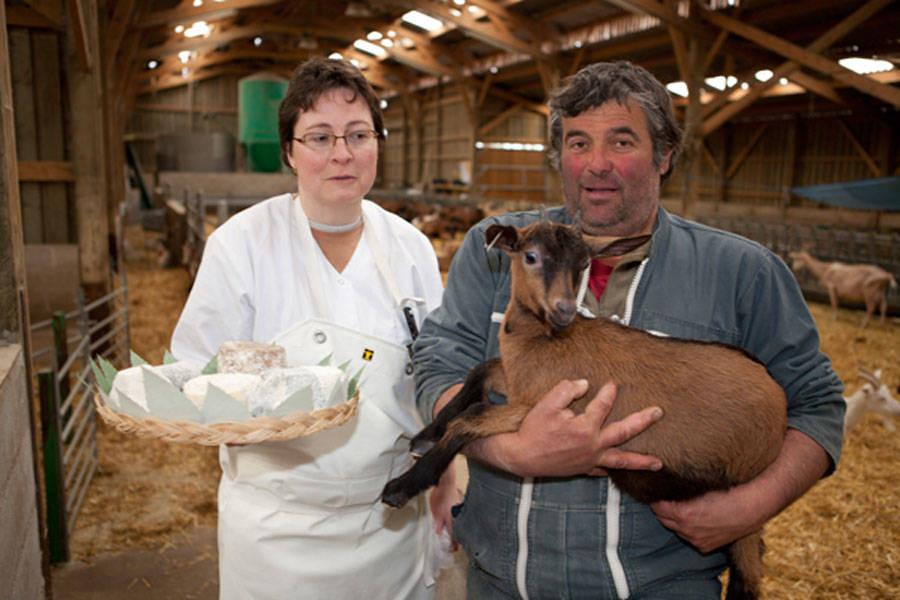 Chèvrerie du Lunain - Producteur de fromage de chèvre - La Ruche qui dit Oui ! à la maison