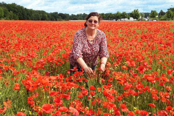 L'Herbier de Milly - Producteur de sirops et tisanes - La Ruche qui dit Oui ! à la maison