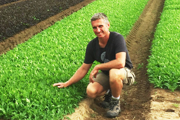 Beausse - Cultivateur de jeunes pousses - La Ruche qui dit Oui ! à la maison