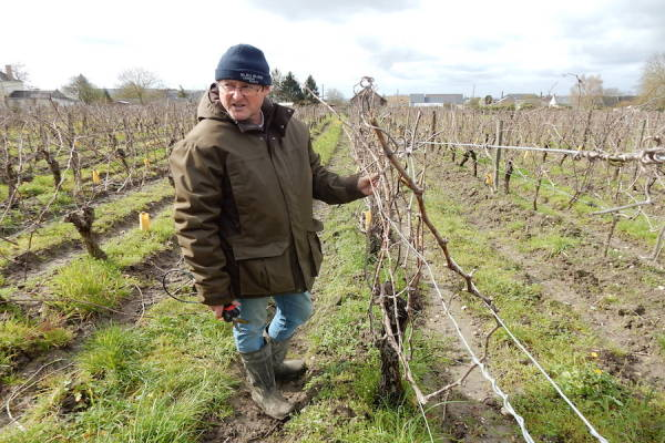 Jean Marie Amirault - Vigneron - La Ruche qui dit Oui ! à la maison