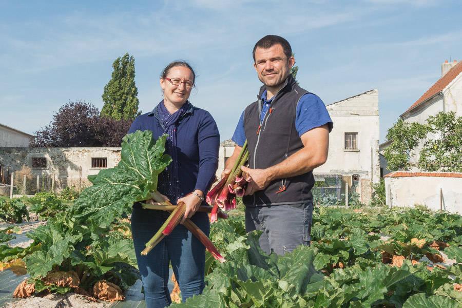 Grand Balleau Terre de Brie - Maraîcher  - La Ruche qui dit Oui ! à la maison