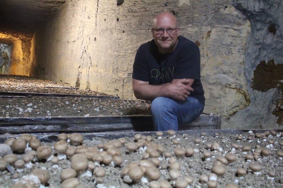 Grande champignonnière de la Croix Madeleine - Champignionniste - La Ruche qui dit Oui ! à la maison