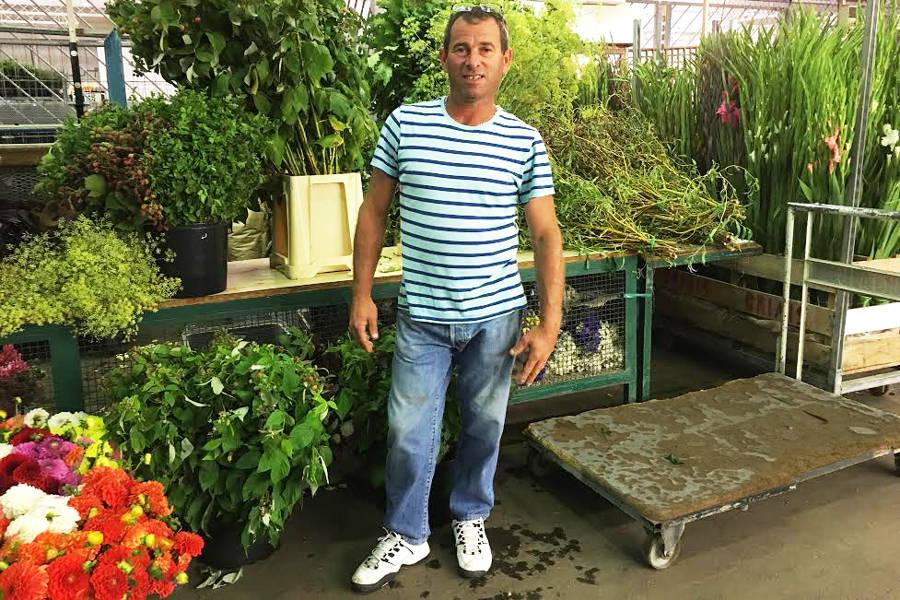 Olivier Vandendaele - Horticulteurs - La Ruche qui dit Oui ! à la maison