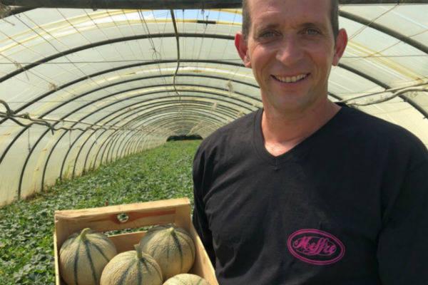 Meffre - Producteur de melons - Le Comptoir Local
