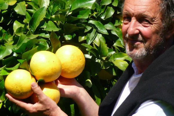 Patrick Berghman - Arboriculteur BIO - La Ruche qui dit Oui ! à la maison