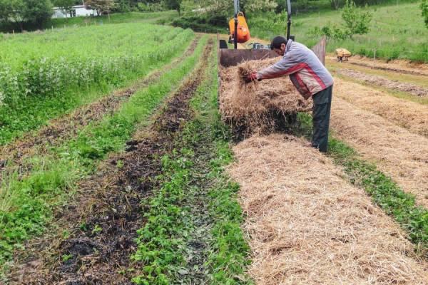 Biperduna - Productrice de piment d'Espelette - La Ruche qui dit Oui ! à la maison