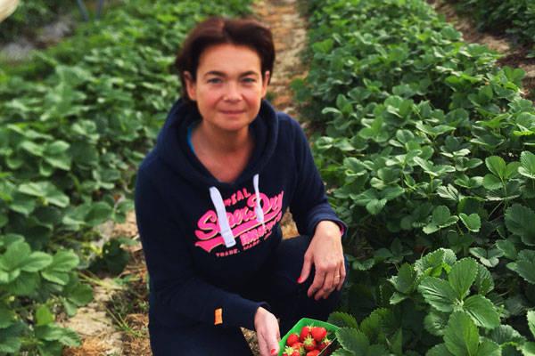 Ferme de Villebourguignon - Producteur de fraises - La Ruche qui dit Oui ! à la maison