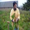 Légumes de l'Omignon - Maraîcher - La Ruche qui dit Oui ! à la maison