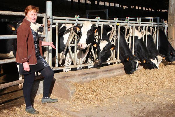 Ferme de Mauperthuis - Producteur de produits laitiers - La Ruche qui dit Oui ! à la maison