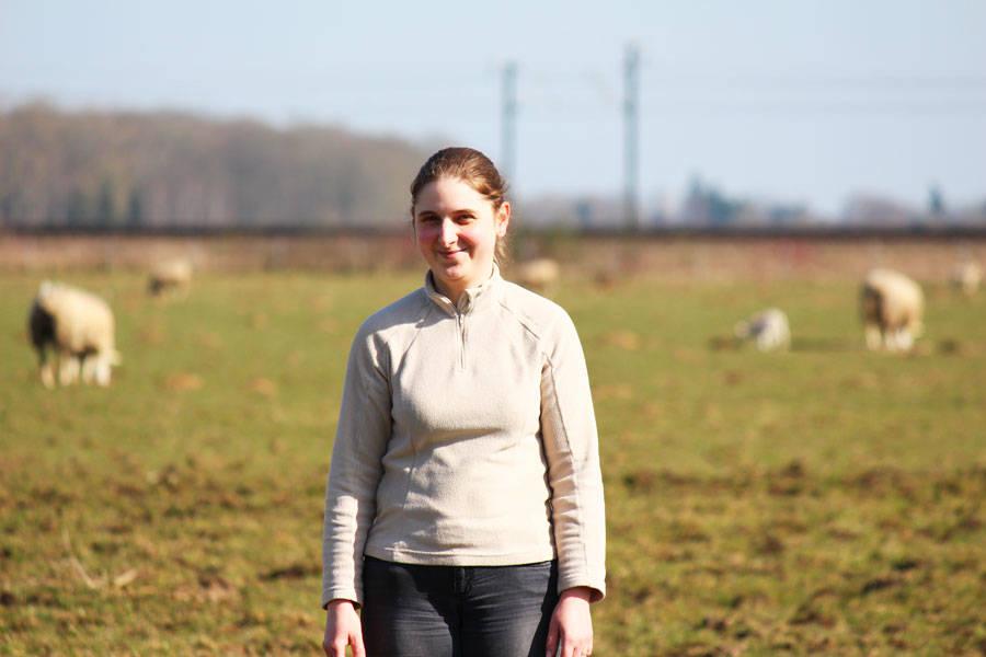 Ferme de Courcelles - Eleveur et producteur laitier - Le Comptoir Local