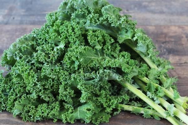 Kale Bio - Fabien Frémin