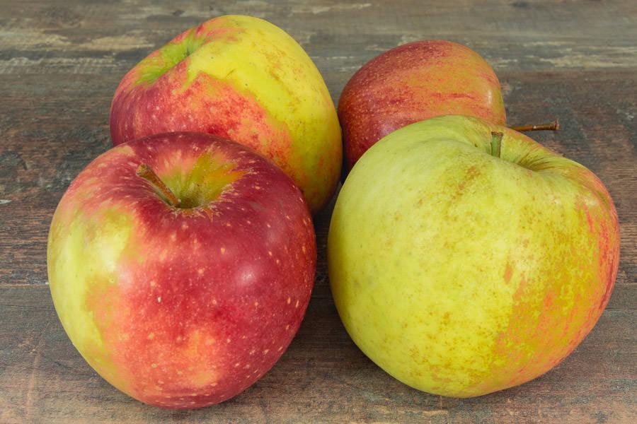Pomme Jonagored - Vergers de Molien - La Ruche qui dit Oui ! à la maison