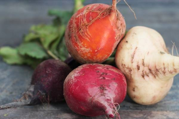 Betterave 3 couleurs BIO - Les Légumes de Planche
