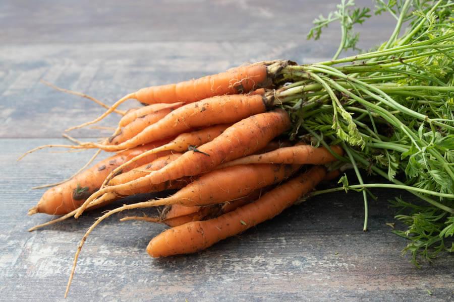 Botte de petites carottes (en conversion BIO) - Cueillette Varet - La Ruche qui dit Oui ! à la maison