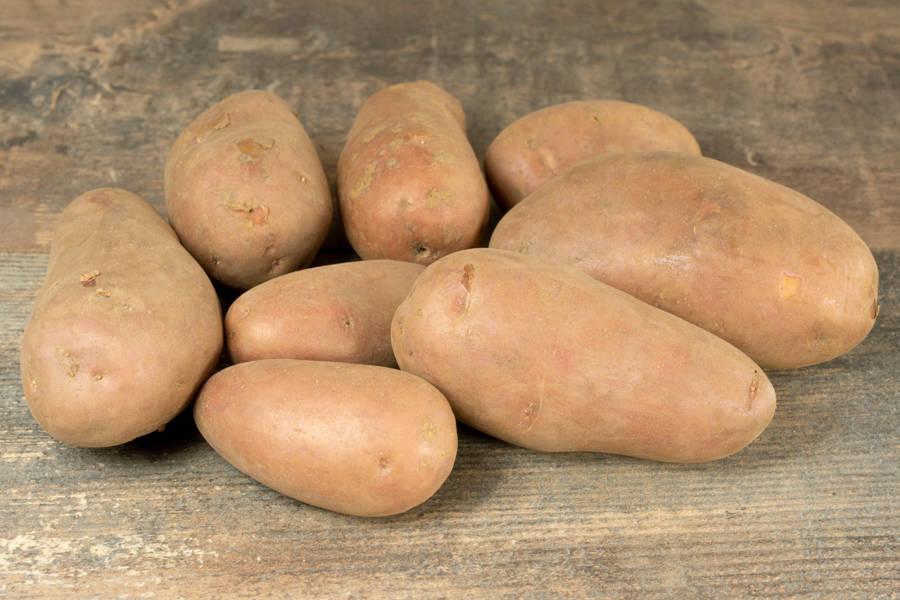 Pomme de terre Chérie BIO - Les jardins de Courances - La Ruche qui dit Oui ! à la maison