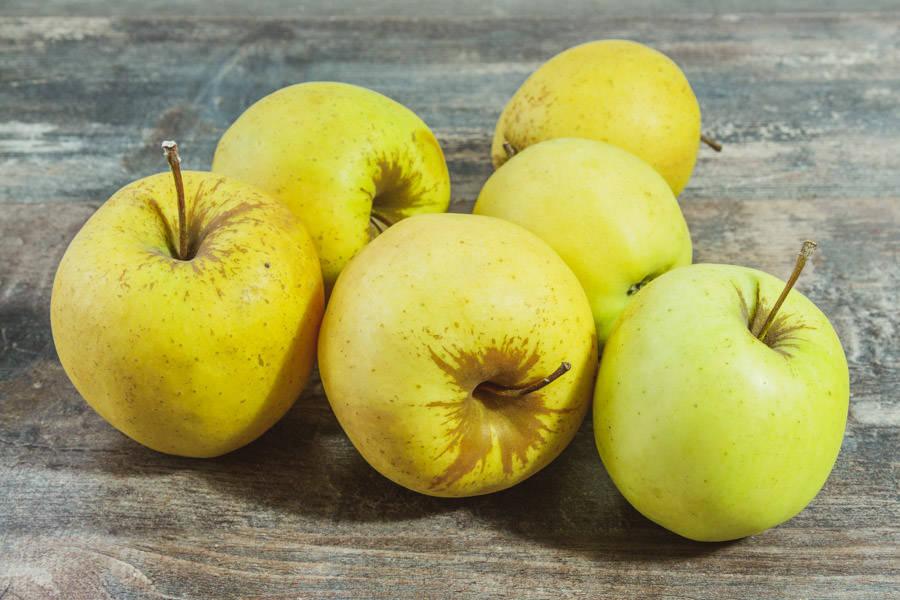 Pomme Golden - Cueillette de Nolongues - La Ruche qui dit Oui ! à la maison