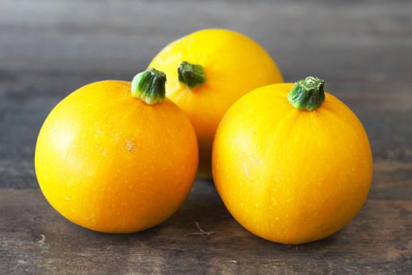 Courgette Jaune Ronde BIO - Les Légumes de Planche
