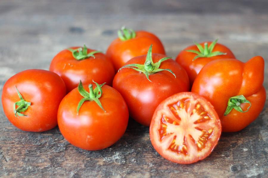 Tomate ronde - Le Potager d'Olivier - La Ruche qui dit Oui ! à la maison