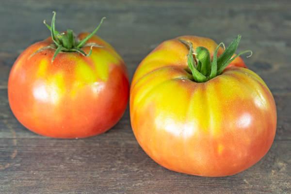 Tomate rose de Berne BIO - Ferme Lafouasse