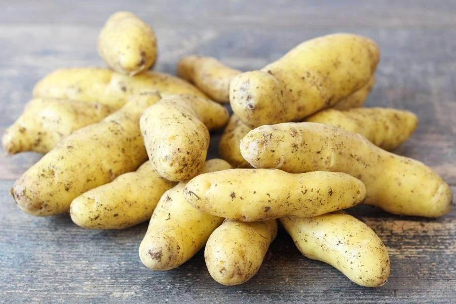 Pomme de terre ratte - Les Avenages - La Ruche qui dit Oui ! à la maison