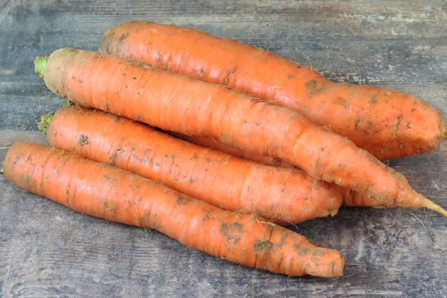 Carottes oranges - Le Potager d'Olivier - La Ruche qui dit Oui ! à la maison