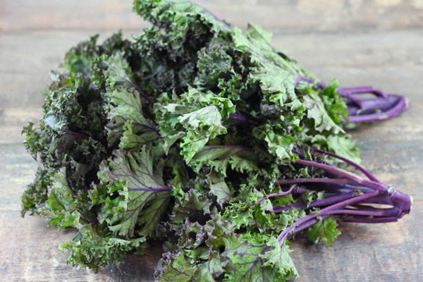 Kale rouge - Annie, Francis et Julie Tremblay