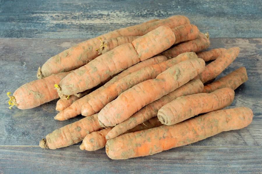 Carottes vrac BIO - Légumes de l'Omignon - La Ruche qui dit Oui ! à la maison