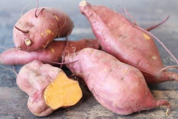 Patate douce - Les Légumes de Laura