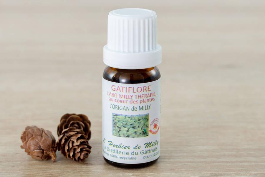 Huile essentielle d'origan - L'Herbier de Milly - La Ruche qui dit Oui ! à la maison