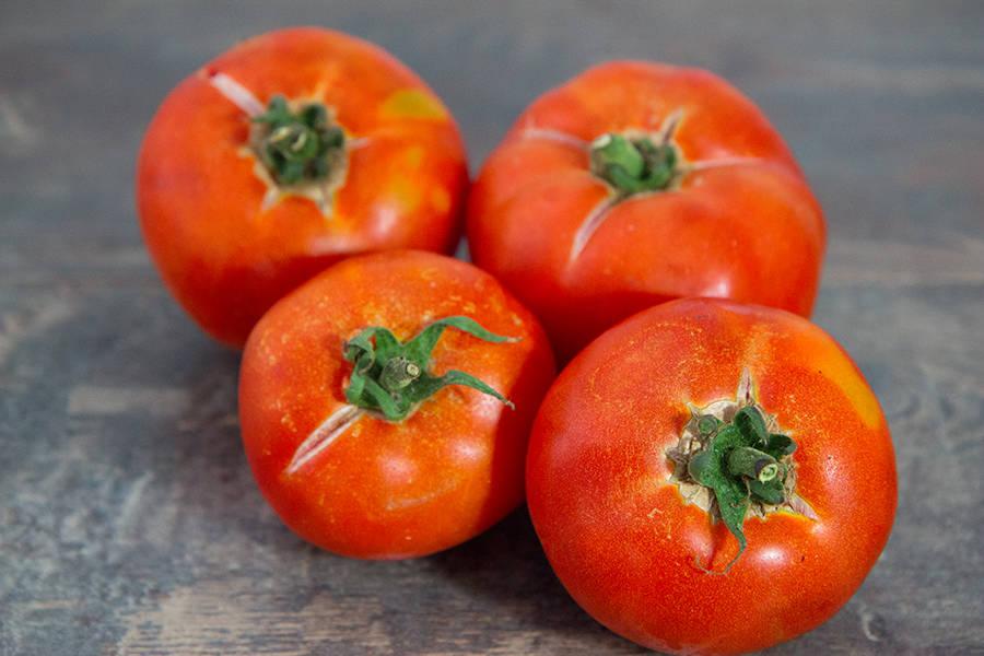 Tomates rondes Maestria - Les Fruits Rouges de mon Jardin - La Ruche qui dit Oui ! à la maison
