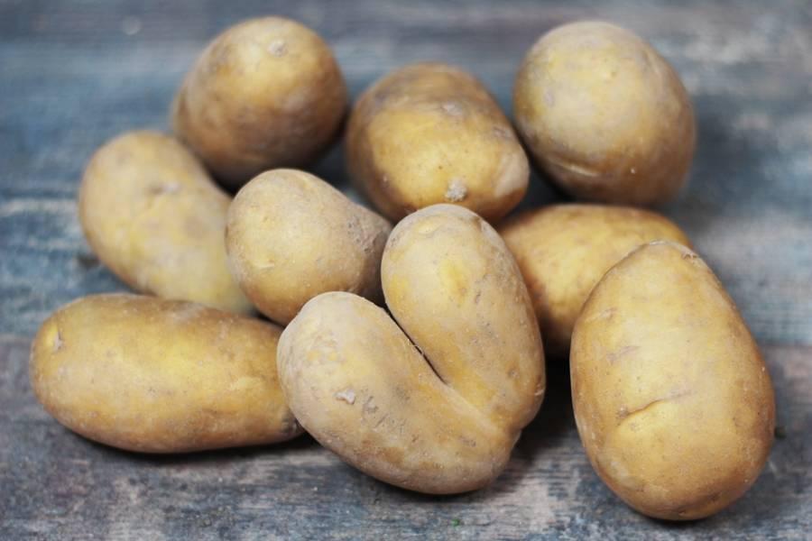Pomme de Terre Allians BIO - Ferme de Chatenoy - La Ruche qui dit Oui ! à la maison