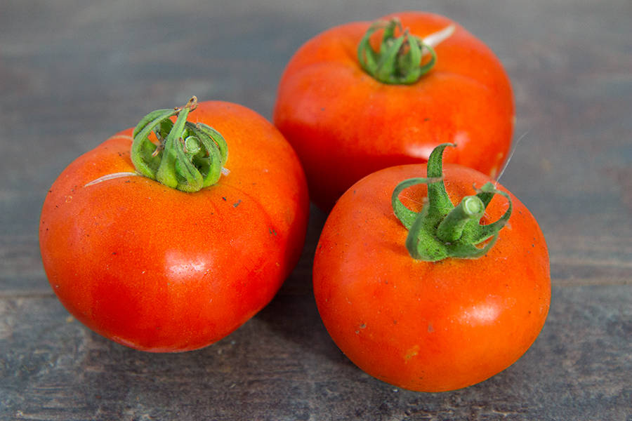 Tomate ronde rouge BIO - Ferme Lafouasse - La Ruche qui dit Oui ! à la maison