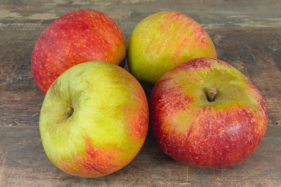 Pomme Cox - Vergers de Molien - La Ruche qui dit Oui ! à la maison