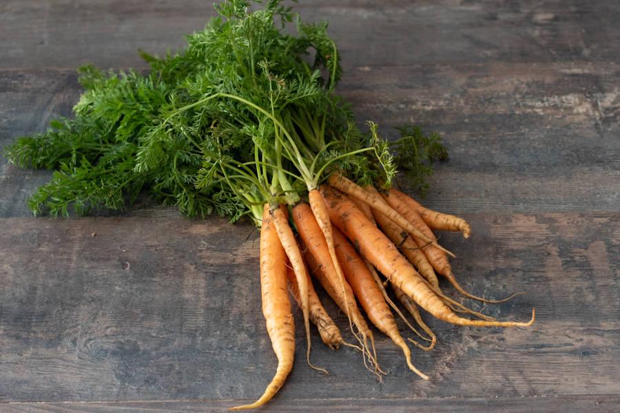 Petite carotte orange avec fane - Ferme de la Villeneuve - La Ruche qui dit Oui ! à la maison