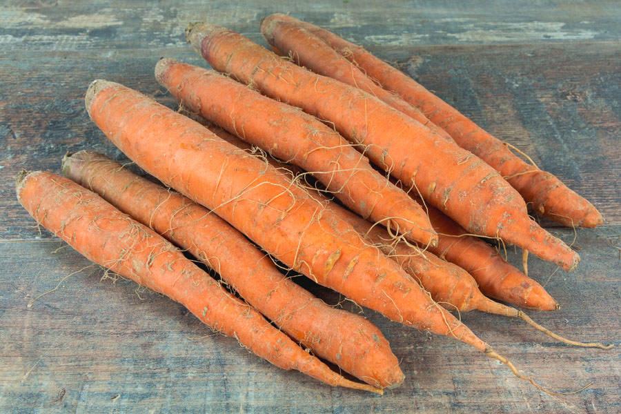 Carotte orange - Ferme de la Villeneuve - La Ruche qui dit Oui ! à la maison
