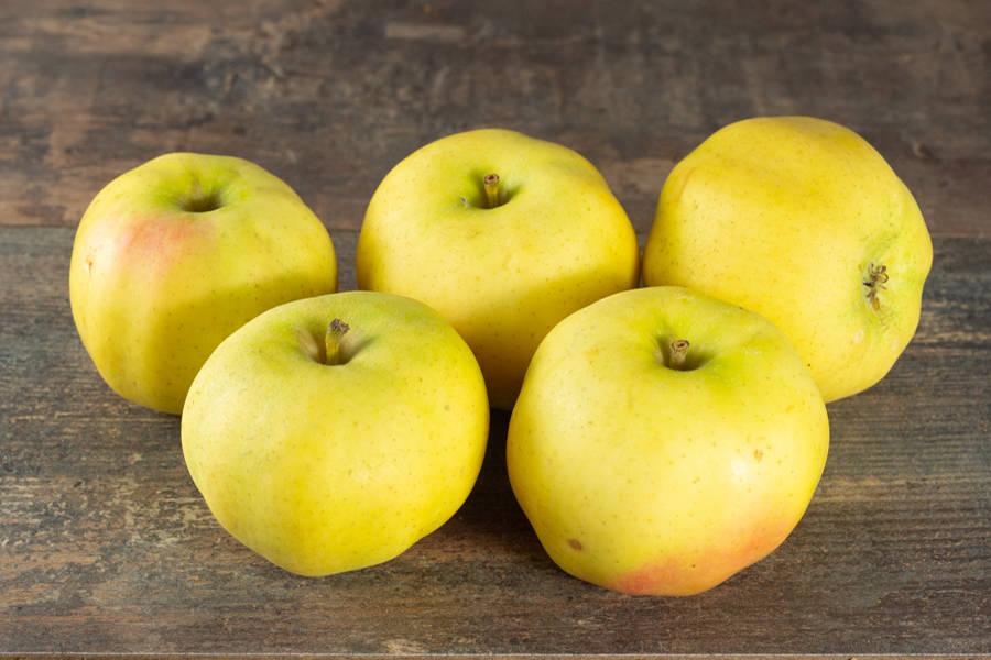 Pomme Chanteclerc - Vergers de Pomamour - La Ruche qui dit Oui ! à la maison