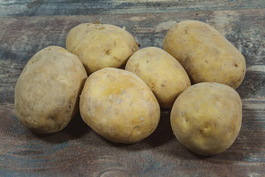 Pomme de terre Maiwenn BIO - La Coopérative Bio d'Île-de-France - La Ruche qui dit Oui ! à la maison