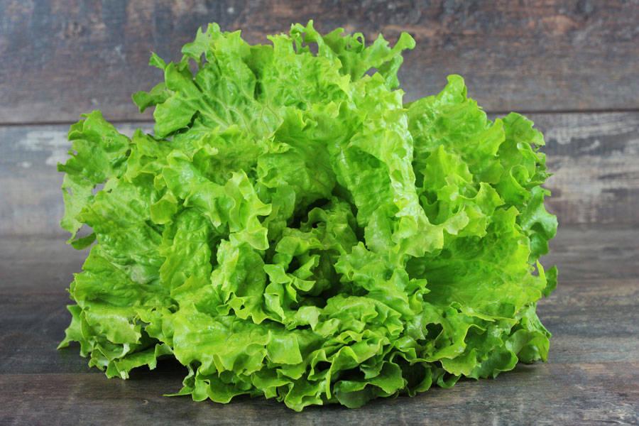 Batavia BIO - Les Légumes de Laura - La Ruche qui dit Oui ! à la maison