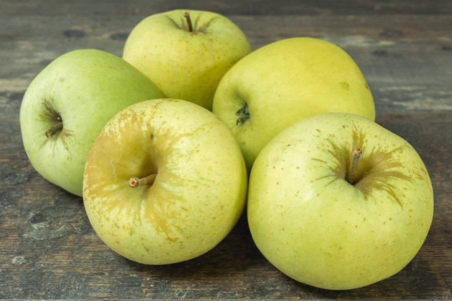 Pomme Freyberg - Vergers de Pomamour - La Ruche qui dit Oui ! à la maison