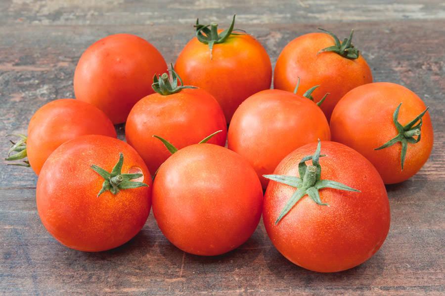 Tomate cocktail Campari - Ferme de la Marche - La Ruche qui dit Oui ! à la maison