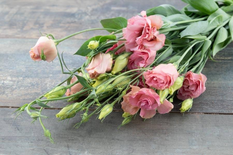 Lisianthus rosées - EARL Mangini - La Ruche qui dit Oui ! à la maison