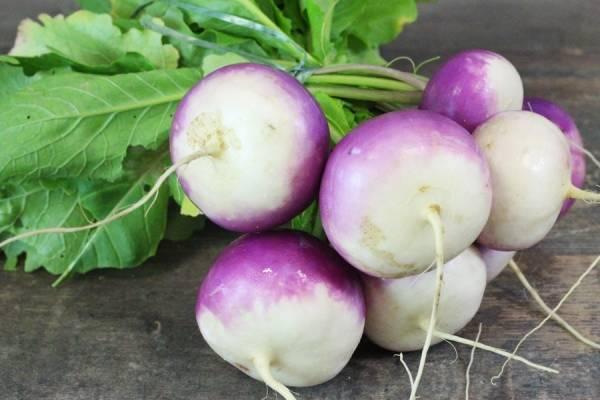 Botte de navets blancs et violets BIO - Les Légumes de Planche