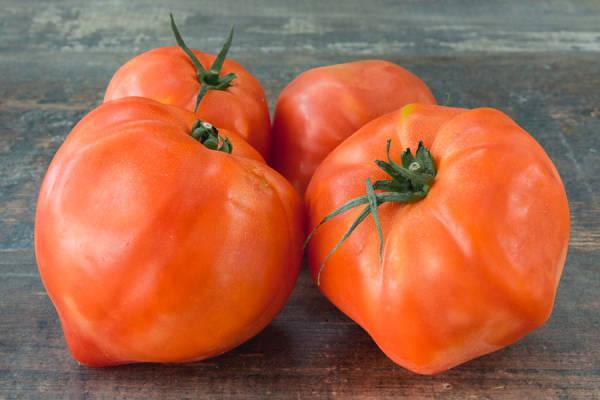 Tomate ancienne coeur de boeuf - Les Saveurs de Chailly